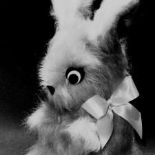 Large Soft Bunny